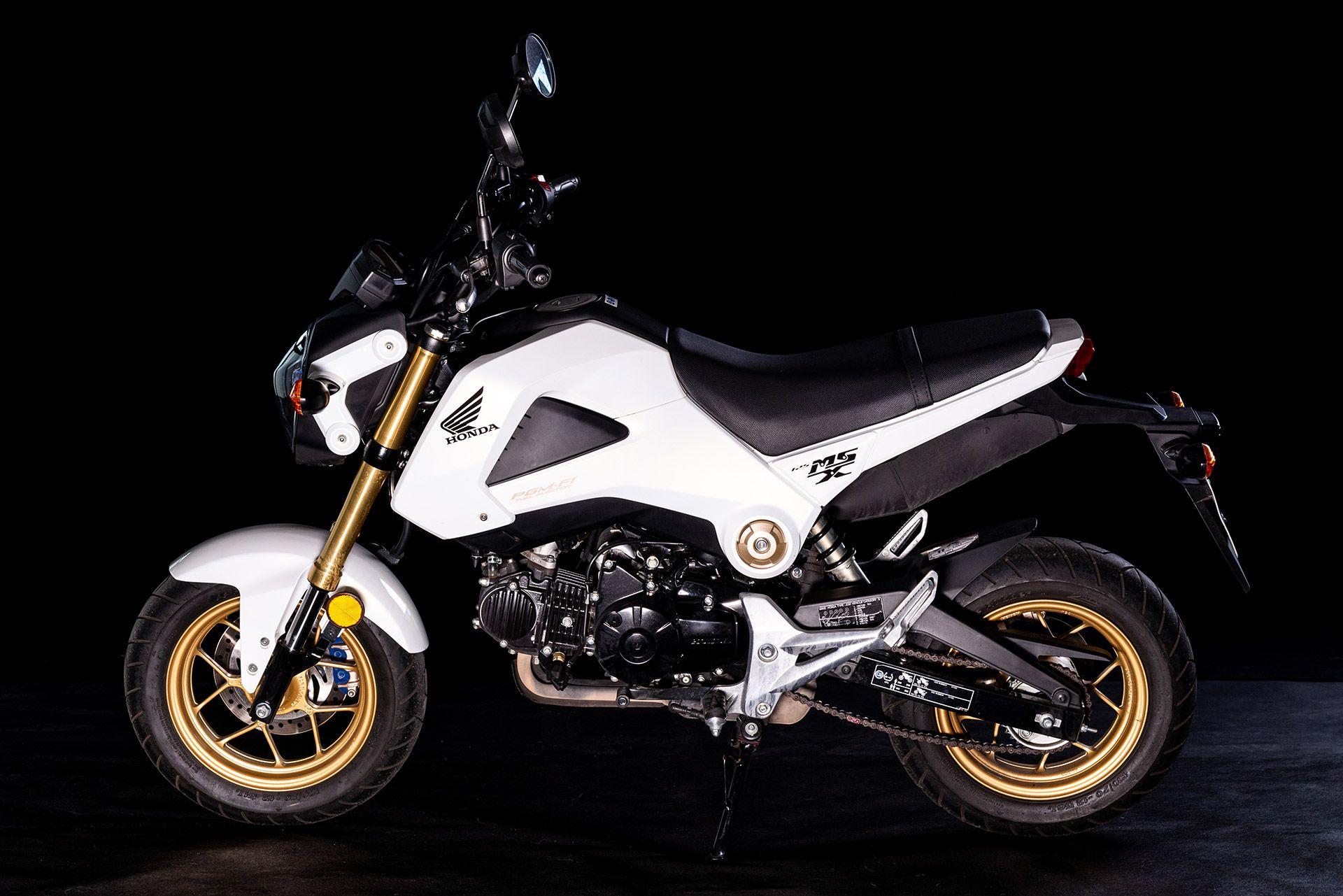 Fahrschule Berlin allroad Motorrad Honda MSX von der Seite