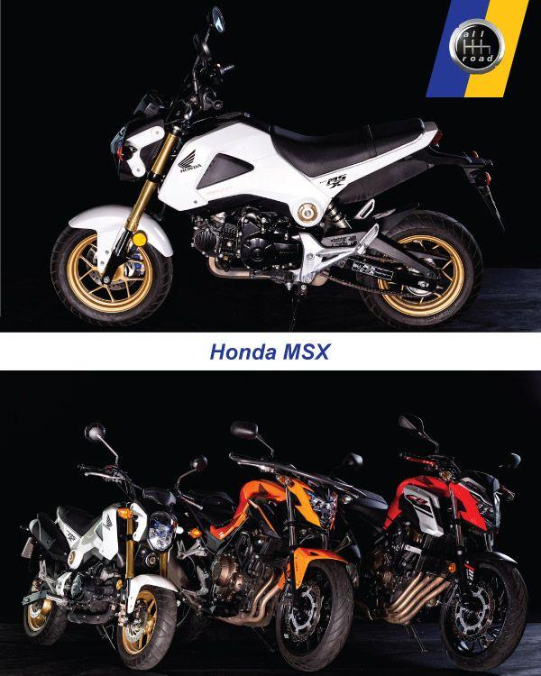 Fahrschule Berlin allroad - Motorrad Honda MSX